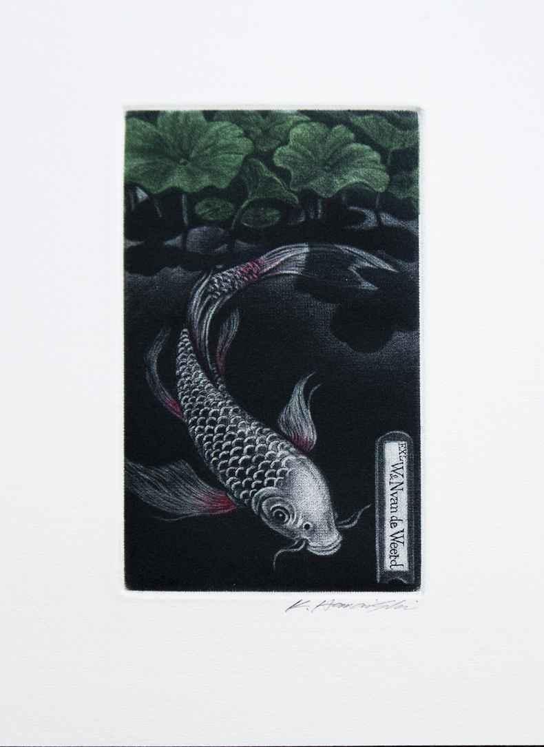 Asagi Butterfly Carp by  Katsunori Hamanishi - Masterpiece Online