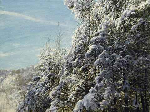 Winter Sky Contrails  by  Michael Wheeler