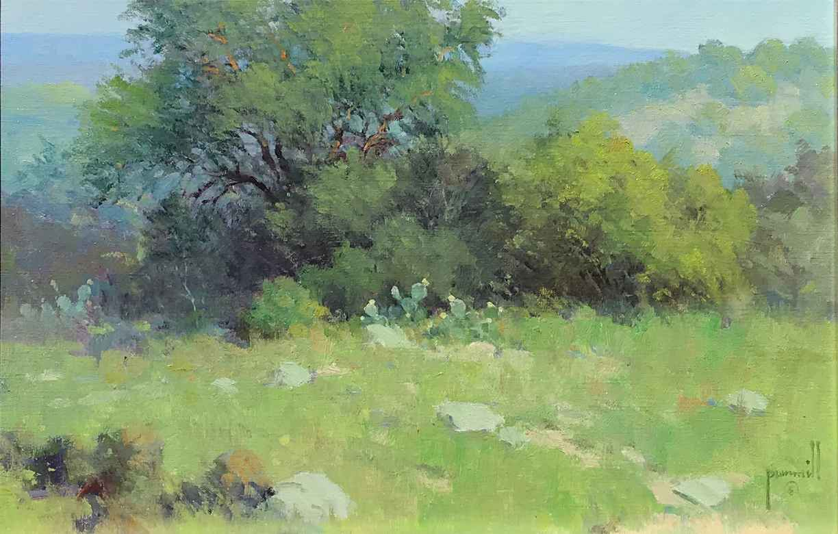 Hill Country Afternoon by Mr. & Mrs. Robert Pummill - Masterpiece Online