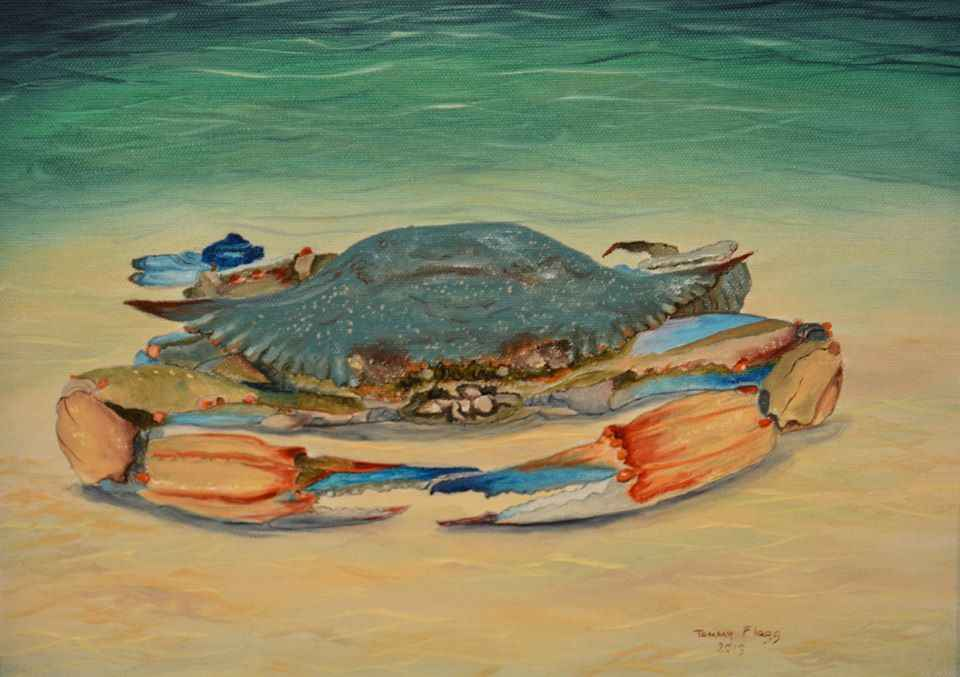 Crab Study#1 by  Tammy Flagg - Masterpiece Online