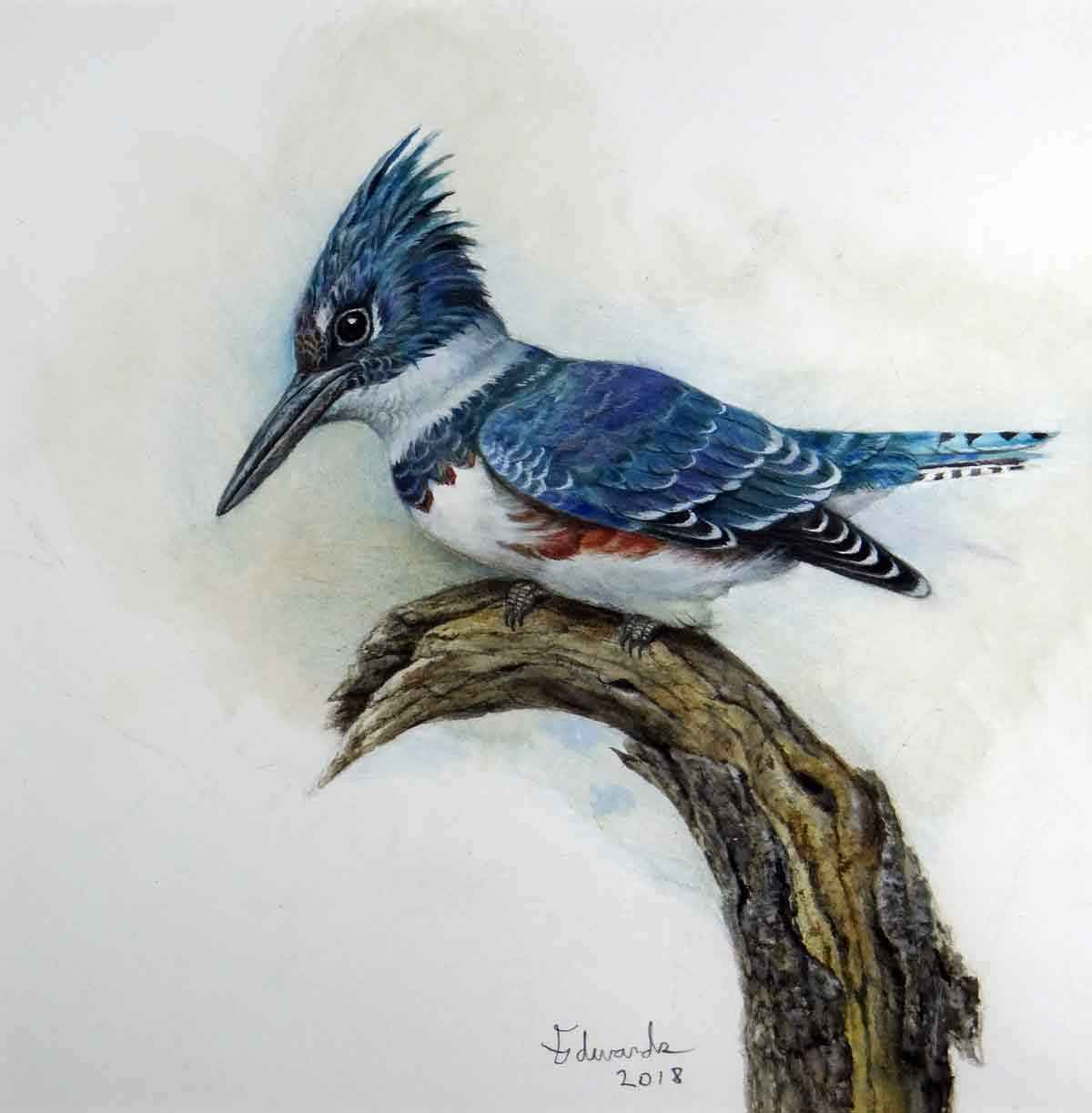 Kingfisher by  Wallace Edwards - Masterpiece Online