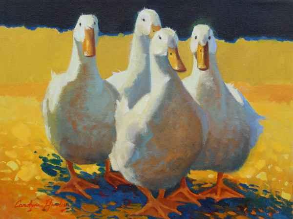 Happy Ducks  by  Carolyne Hawley