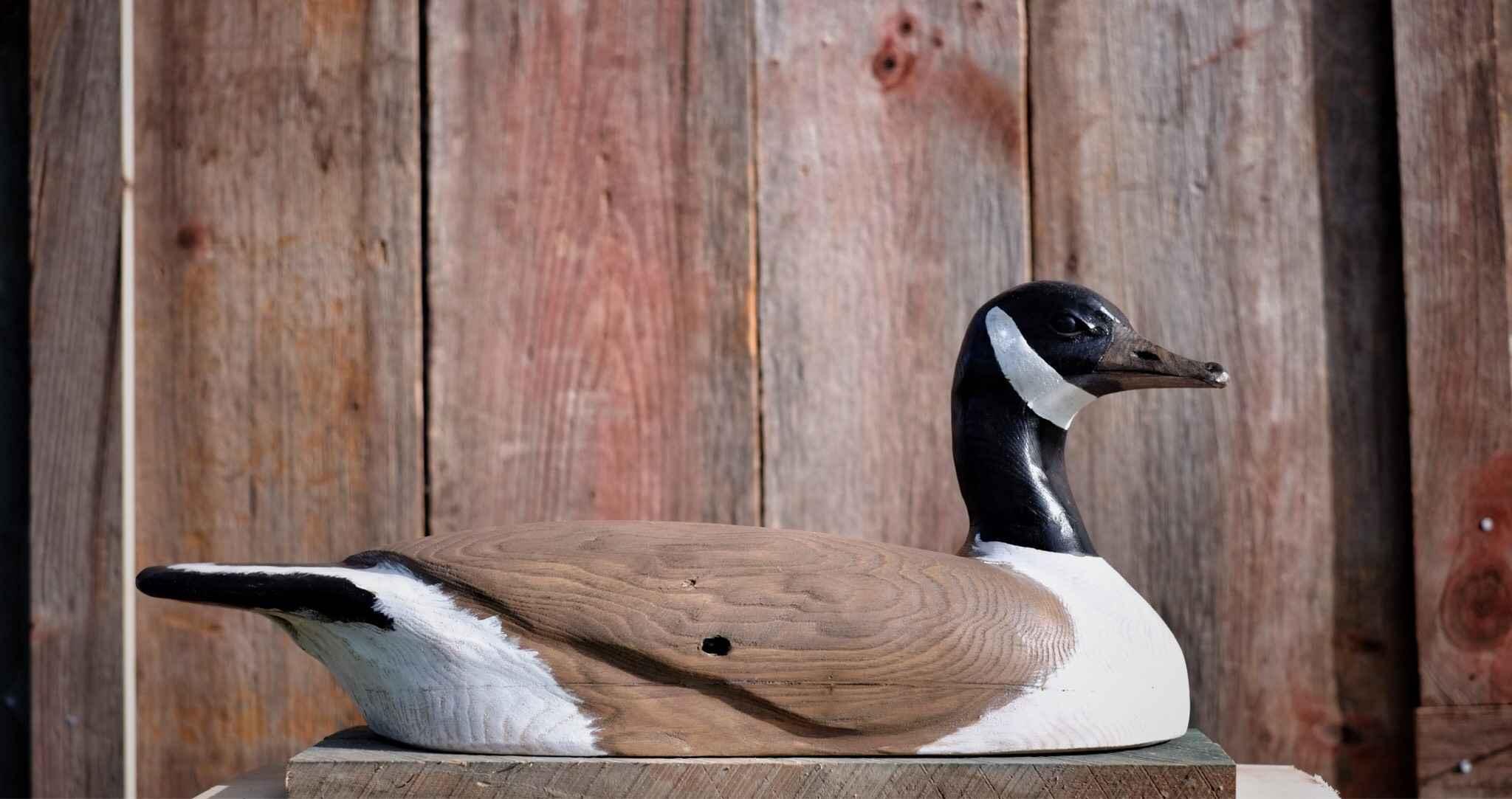 Sitting Goose by  Wendy Lichtensteiger - Masterpiece Online