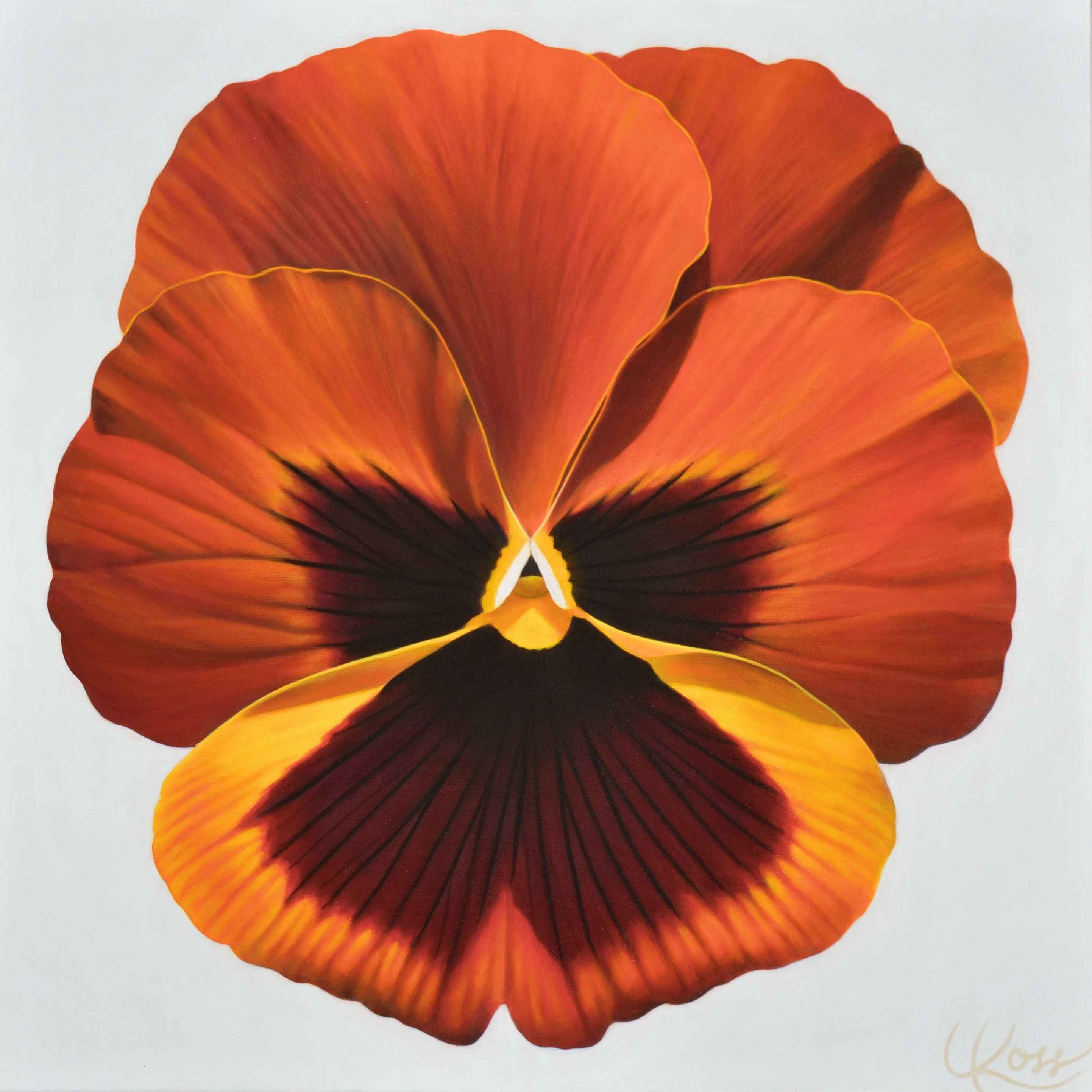Pansy #15 by  Laurie Koss - Masterpiece Online
