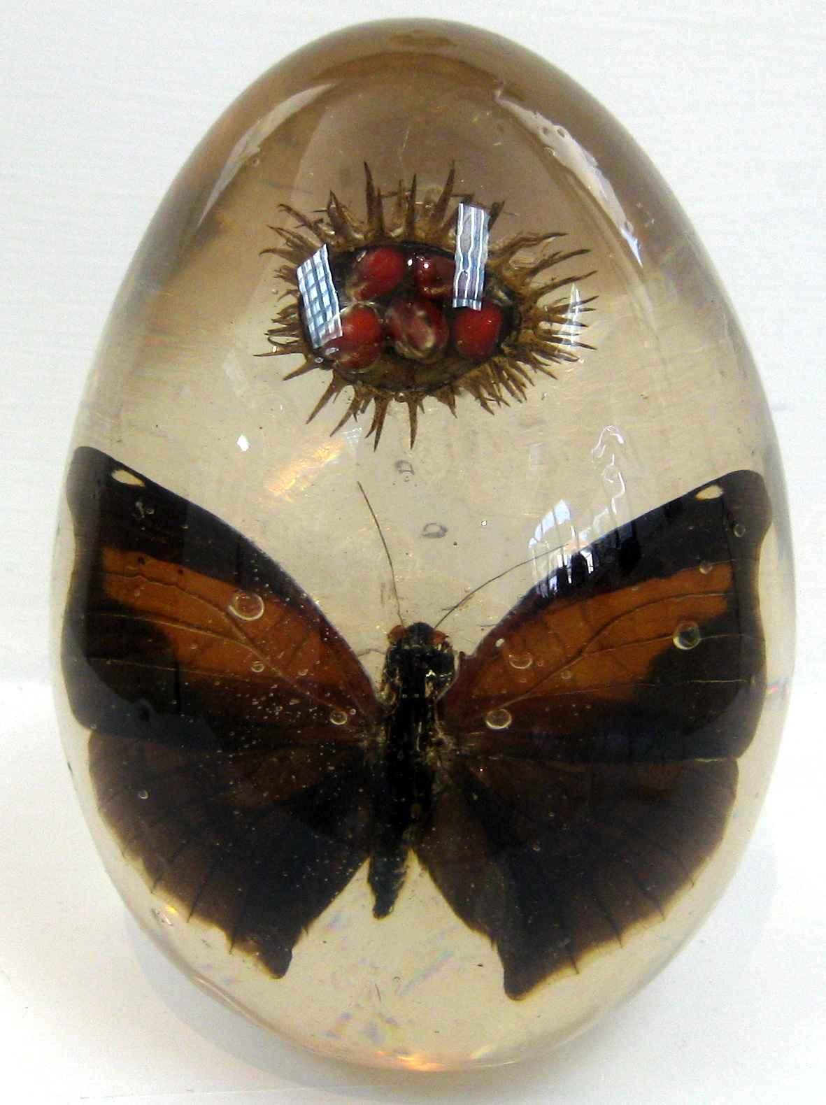 Enigma by Ms Nakazzi Hutchinson - Masterpiece Online