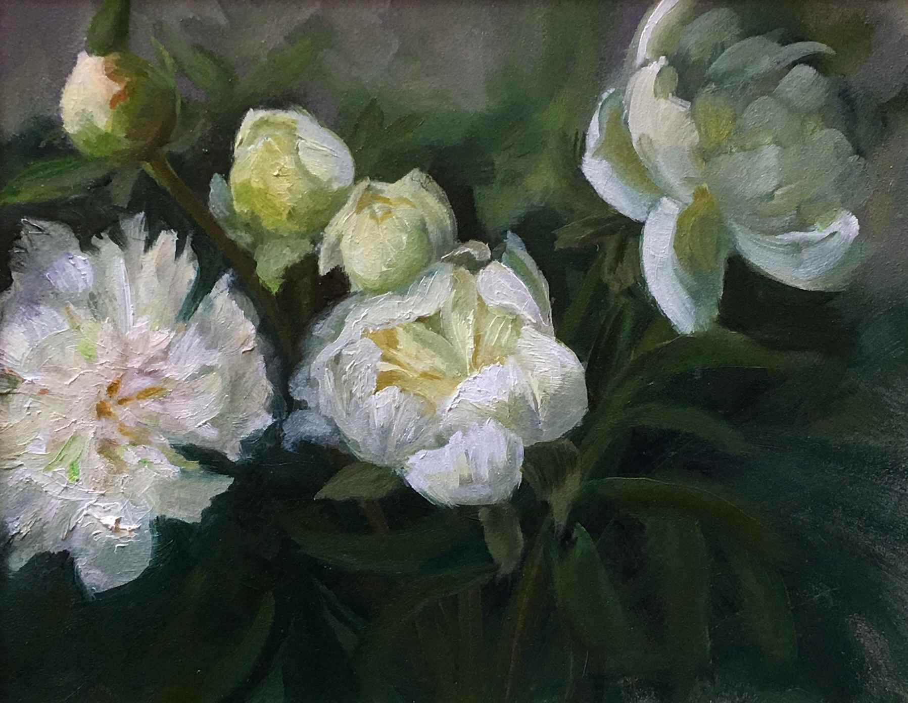 Kathy's White Peonies  by  Cary Jurriaans