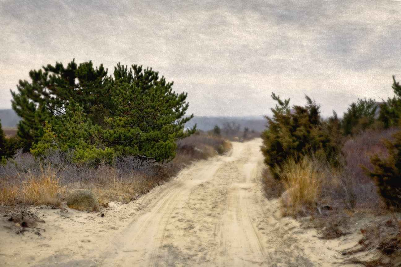 Winter Road, 2008 by  Michael Stimola - Masterpiece Online