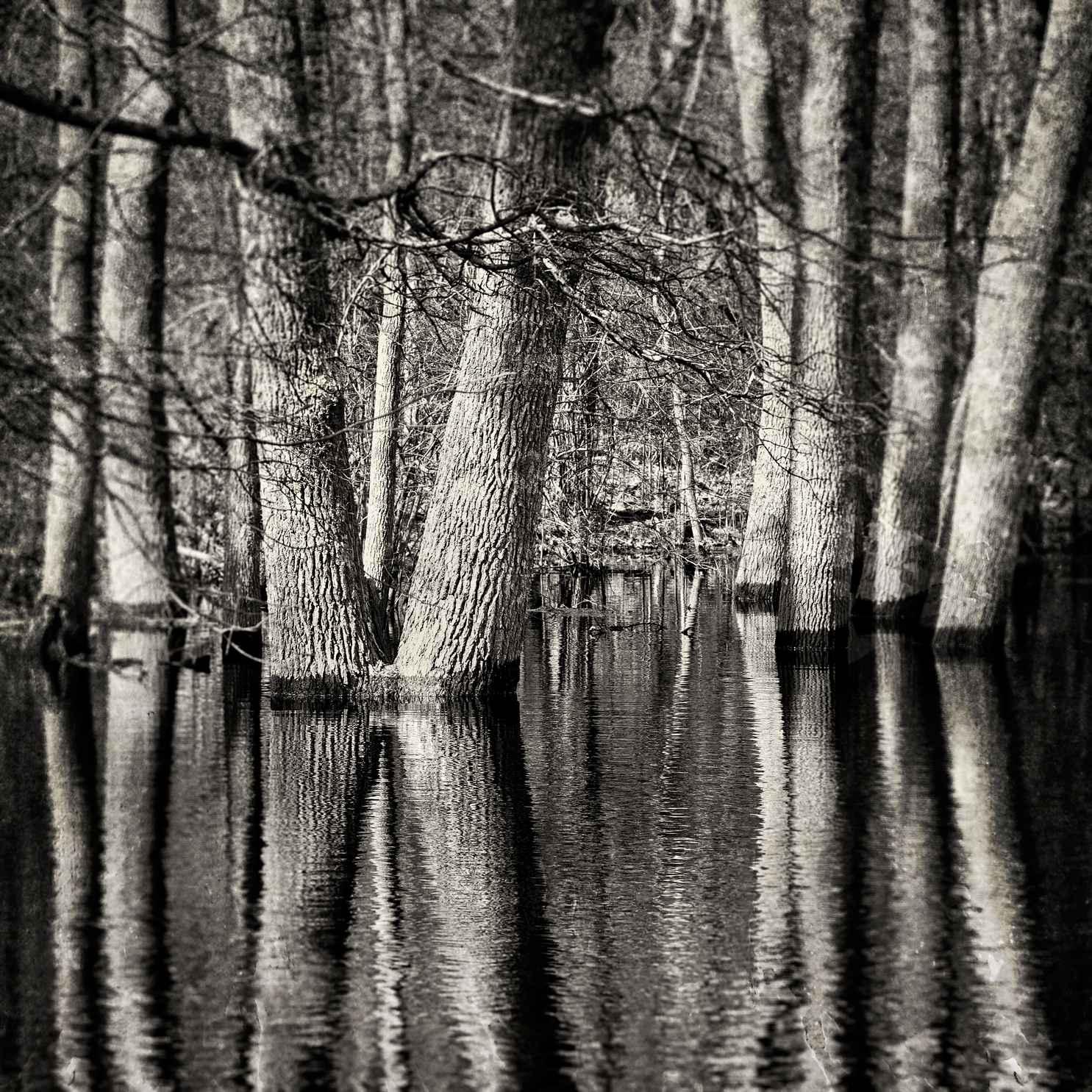 Waterline, Makonikey,... by  Michael Stimola - Masterpiece Online