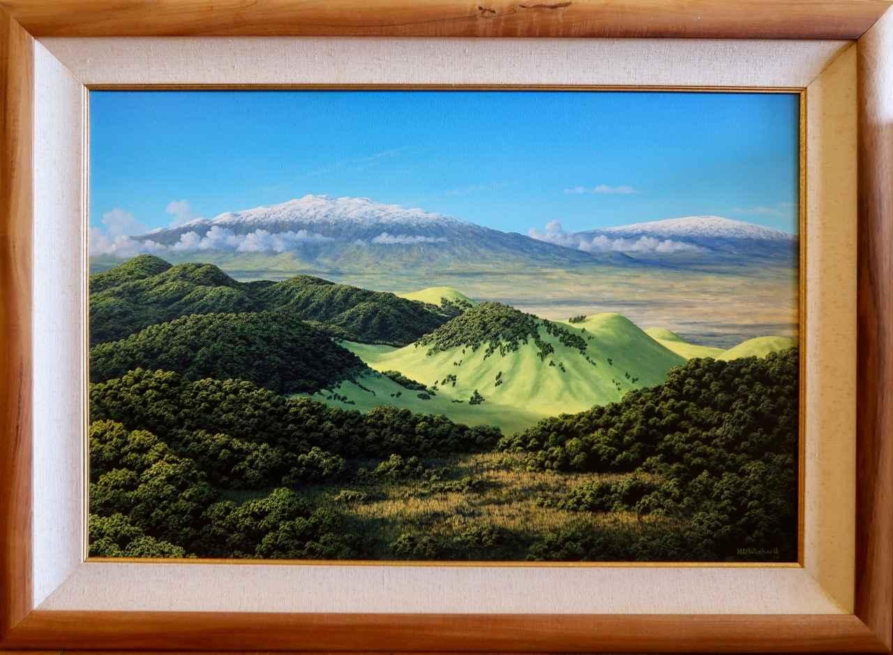 Winter View from Pu'u... by Mr. Harry Wishard - Masterpiece Online