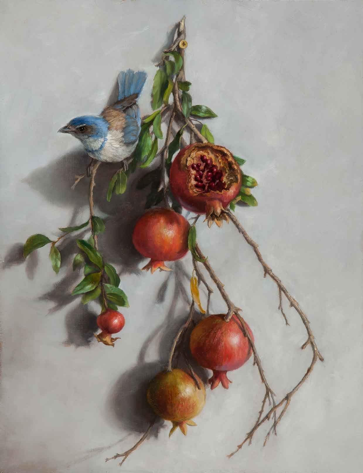 Jay with Pomegranates by  Mary Kay  West  - Masterpiece Online
