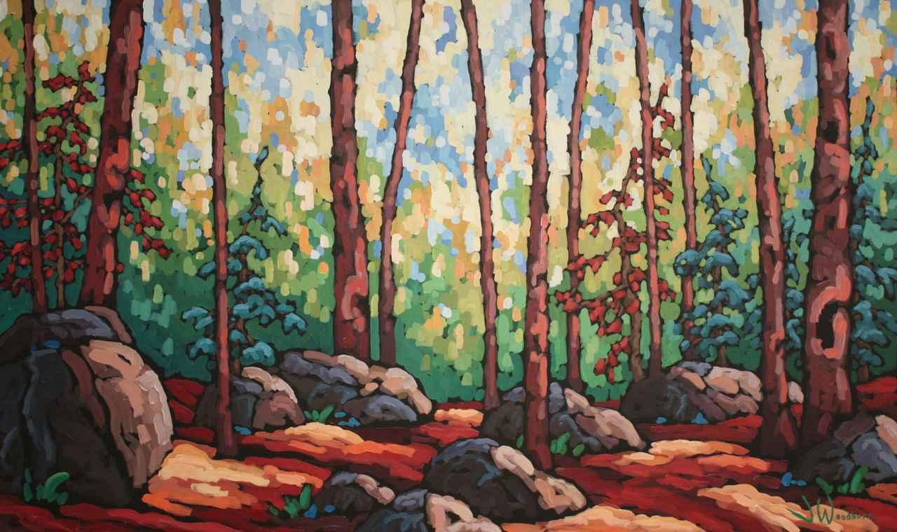 Canopy Light by Ms Jennifer Woodburn - Masterpiece Online