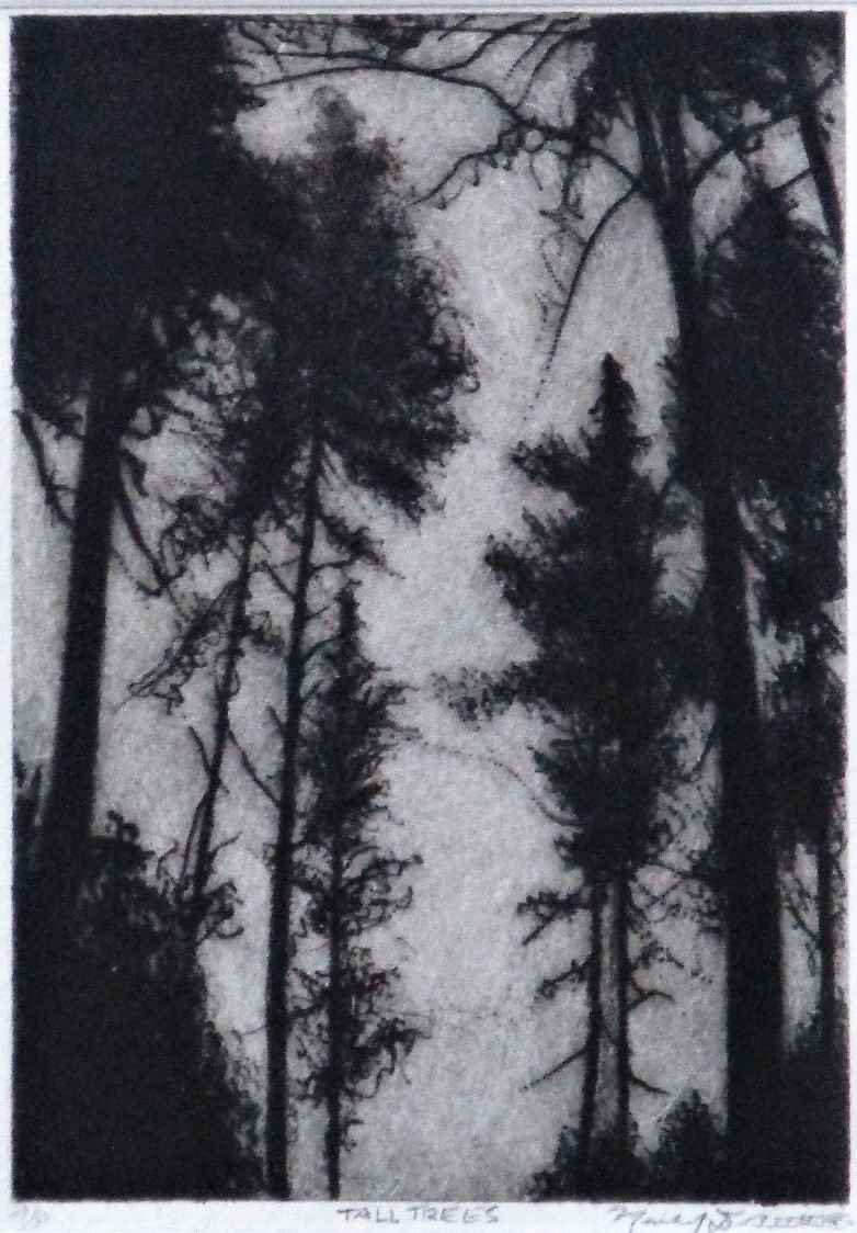 Tall Trees by  Michael DiBitetto - Masterpiece Online