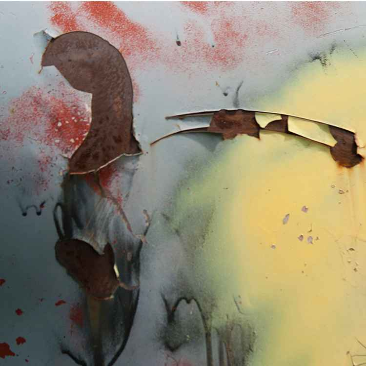 Bird by  JoAnn O'Hare - Masterpiece Online