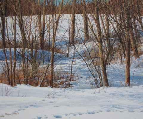 Footprints at Little ... by  Michael Wheeler - Masterpiece Online
