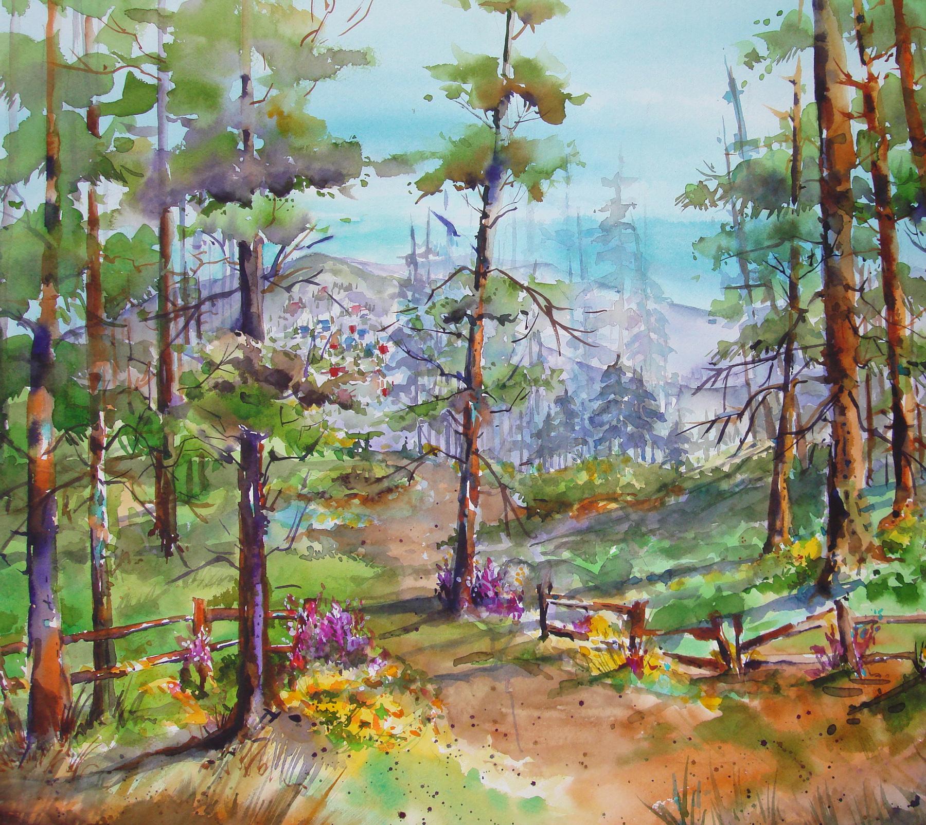 Summer on Mt. Lemmon by  Sandy Walker - Masterpiece Online