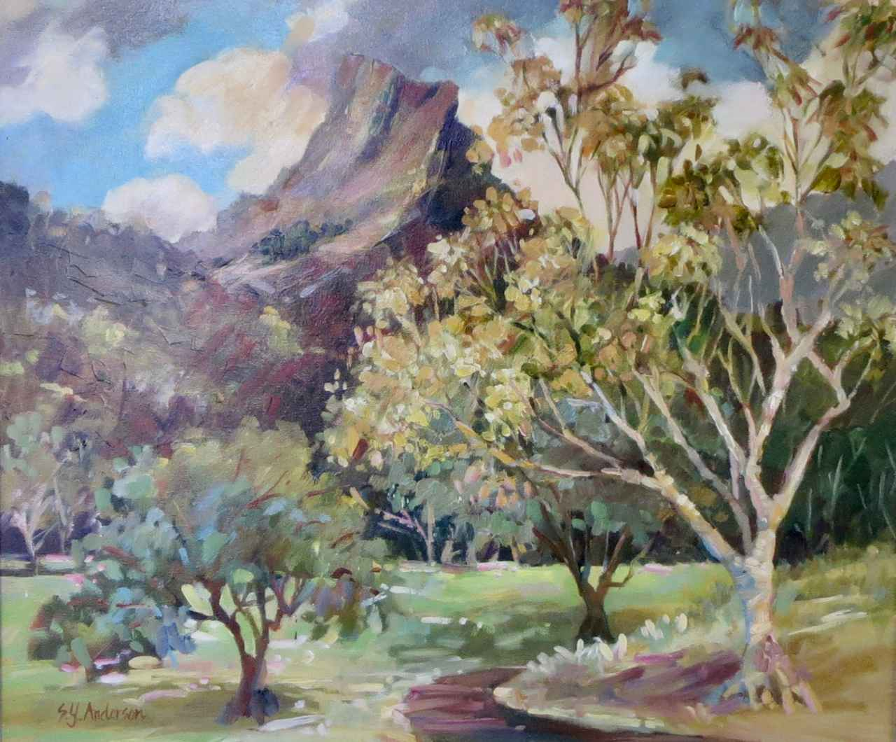 Maunawili Park by  Susie Anderson - Masterpiece Online