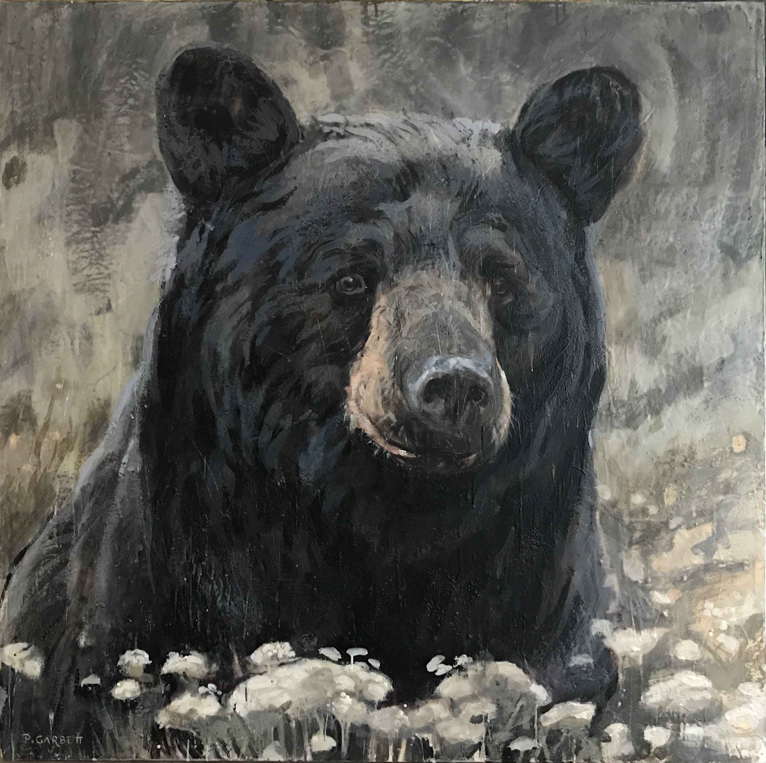 Black Bear #60-15 by  Paul Garbett - Masterpiece Online