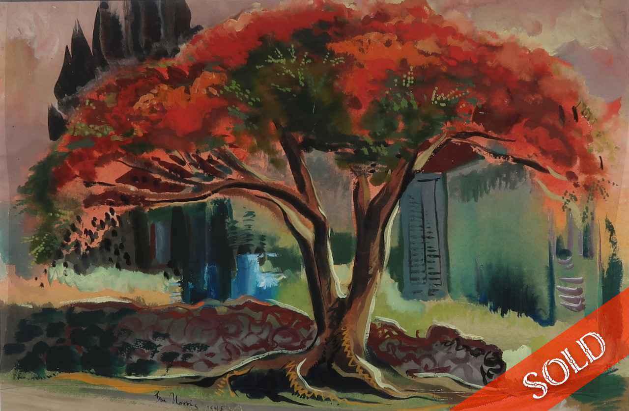 Poinciana Tree by  Robert Benjamin Norris (1910-2006) - Masterpiece Online