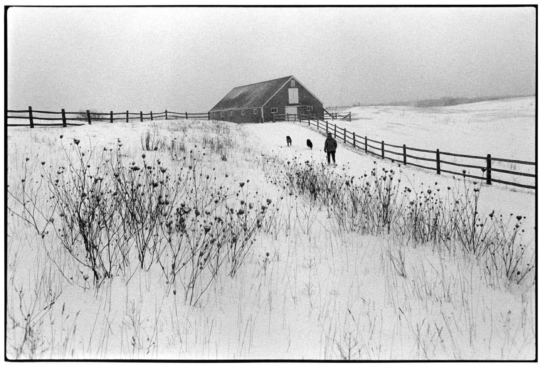 Sweetened Water Farm ... by  Alison Shaw - Masterpiece Online