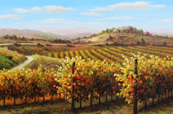 Colors of the Vineyard  by  Soon Ju Choi