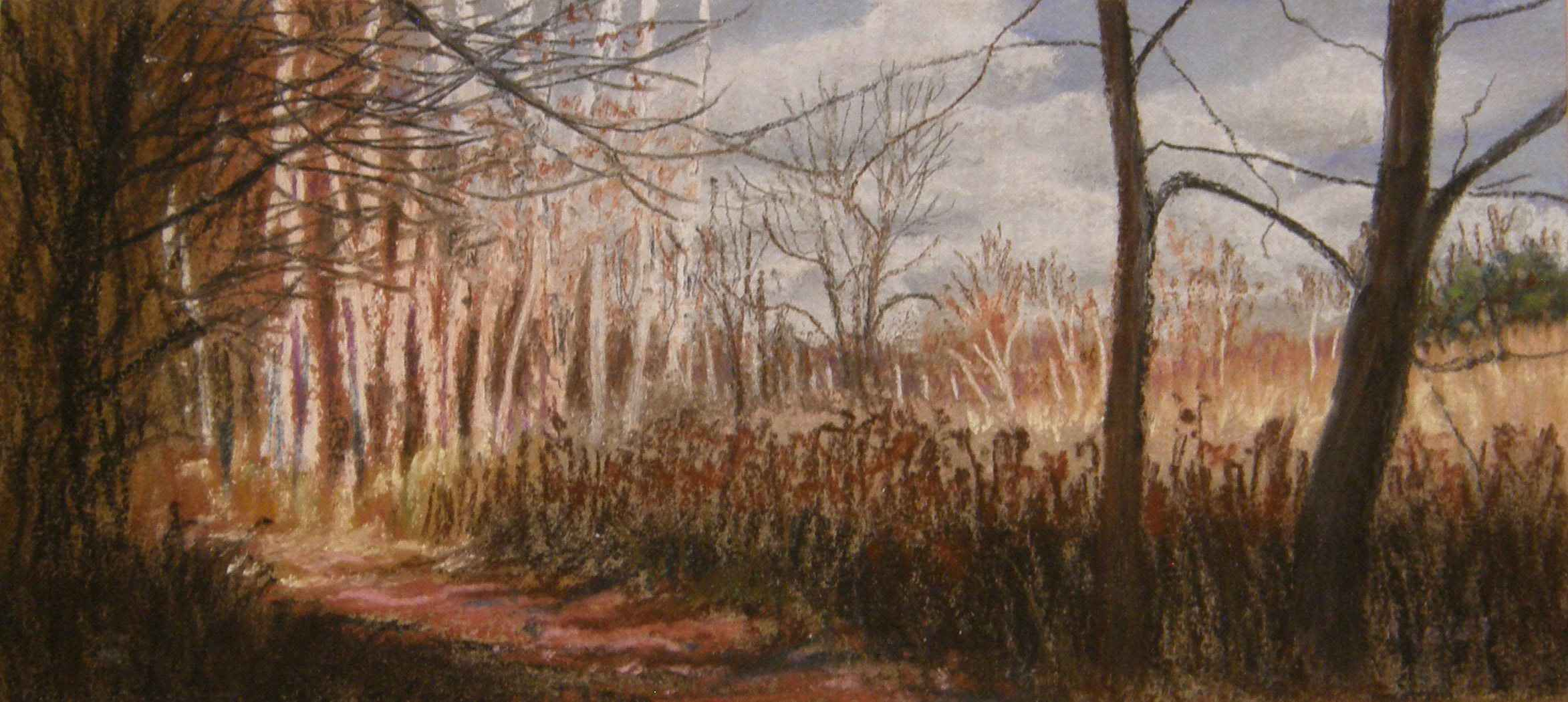 Into the Woods by  Rhoda Tews - Masterpiece Online