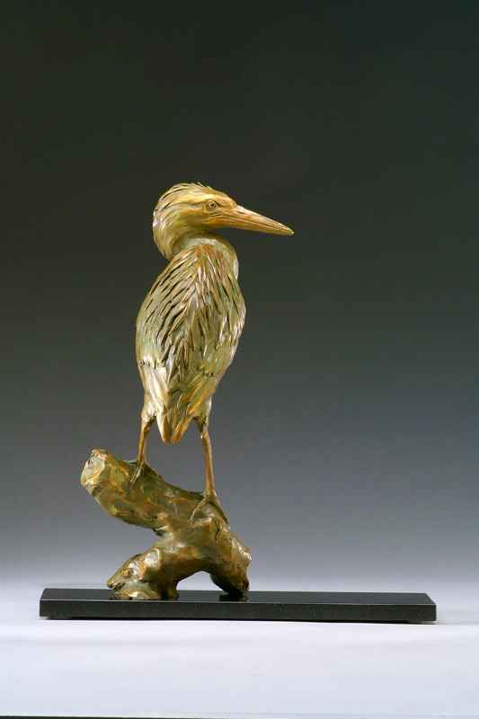 Green Heron # 8 of 30 by Mr. Daniel Glanz - Masterpiece Online