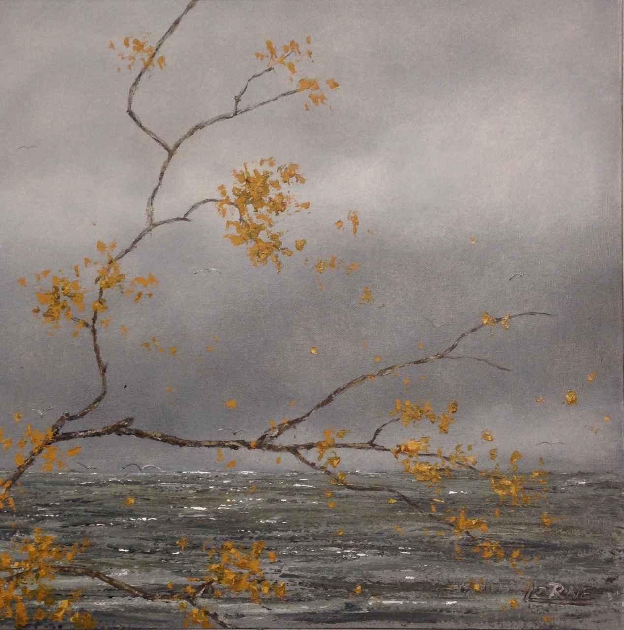 16 x 16 Series VI by Mr. Lorne McDermott - Masterpiece Online