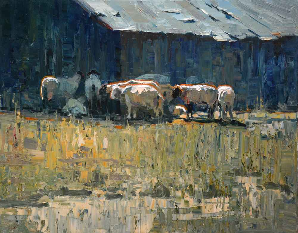 Sheep in Shade  by  Silas Thompson