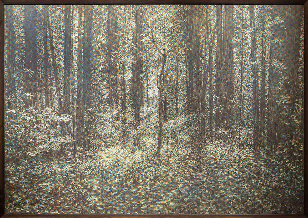Woods with Light by John Roy