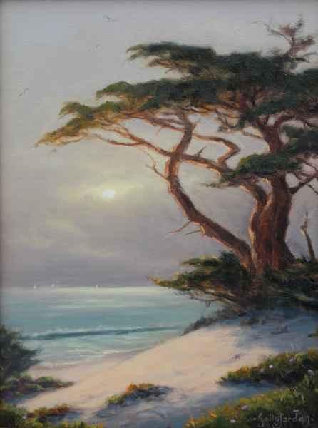 Sun-lit Cypress