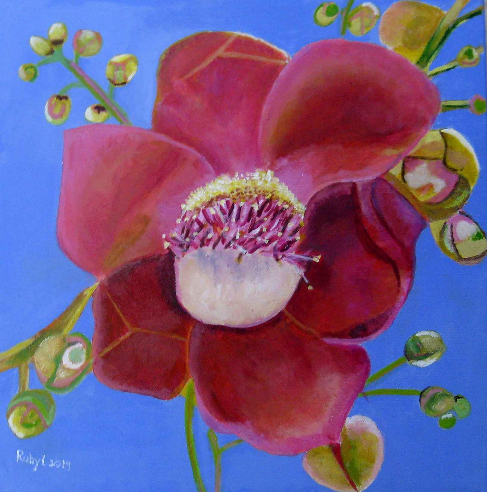 Cannon Ball Flower by  Ruby Lloyd - Masterpiece Online