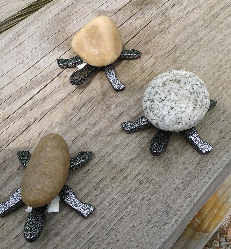 Turtle - Mini 5TF