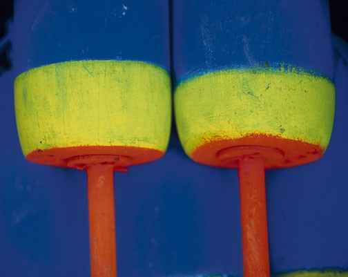 Two Buoys 2002 R1 by  Alison Shaw - Masterpiece Online