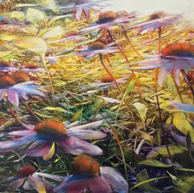 Speeding Coneflowers by  David Dunlop - Masterpiece Online
