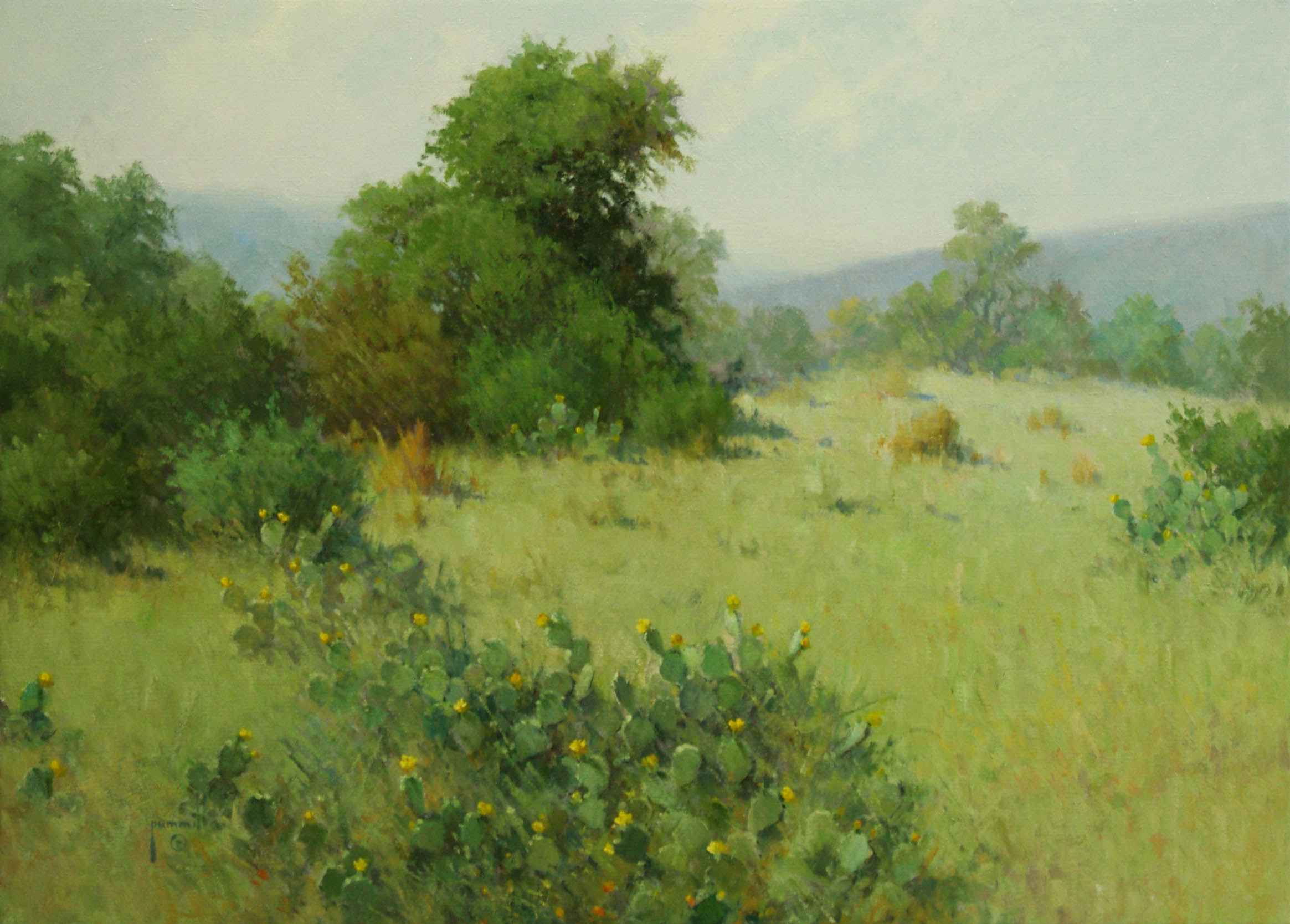 June In Cactus Country by Mr. & Mrs. Robert Pummill - Masterpiece Online