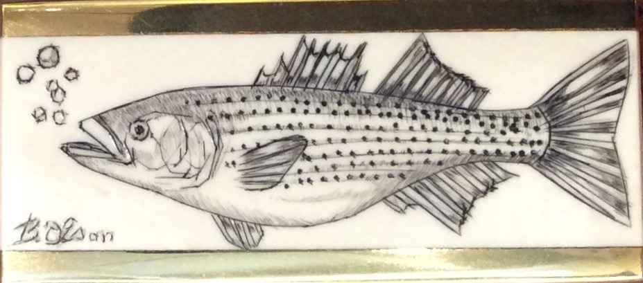 Striped Bass with Bub... by  Brooke Olson - Masterpiece Online