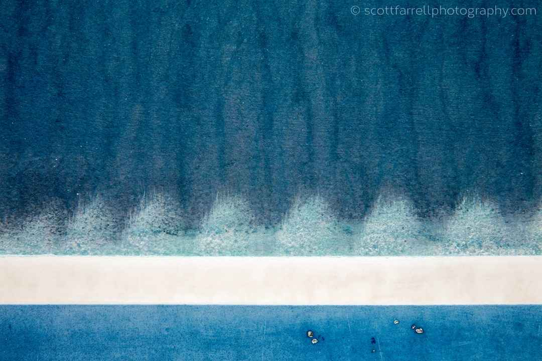 Evergreens in Frost a... by  Scott Farrell - Masterpiece Online