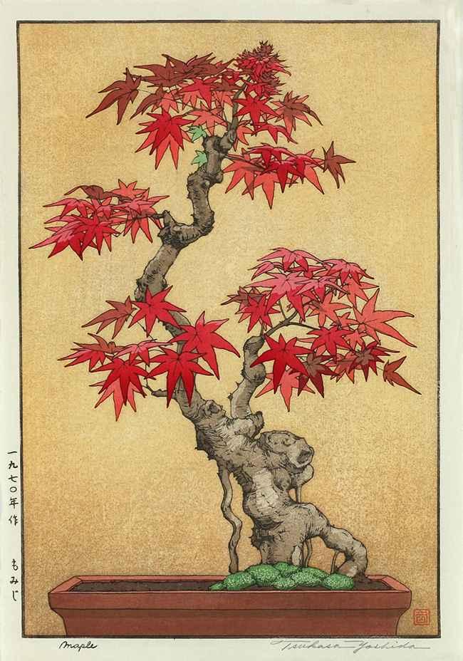 Maple by  Tsukasa Yoshida - Masterpiece Online