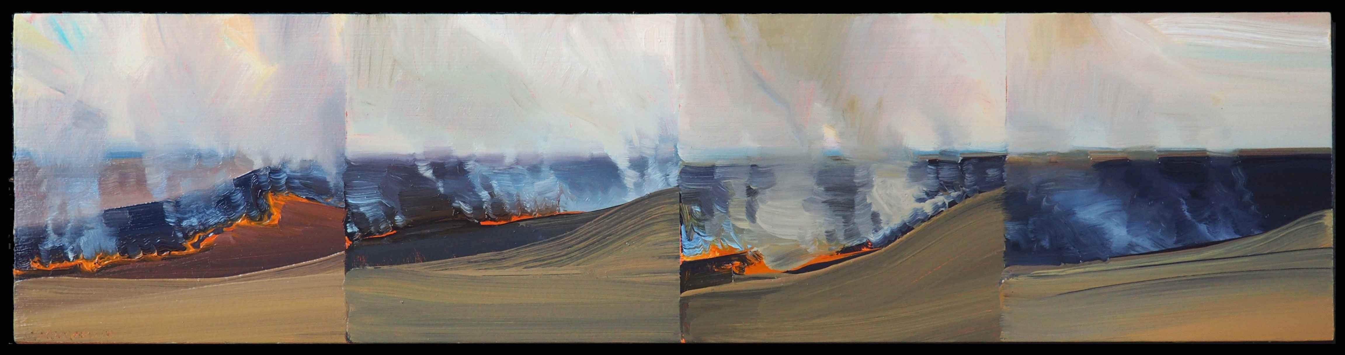 Konza Burn II  by  Lisa Grossman