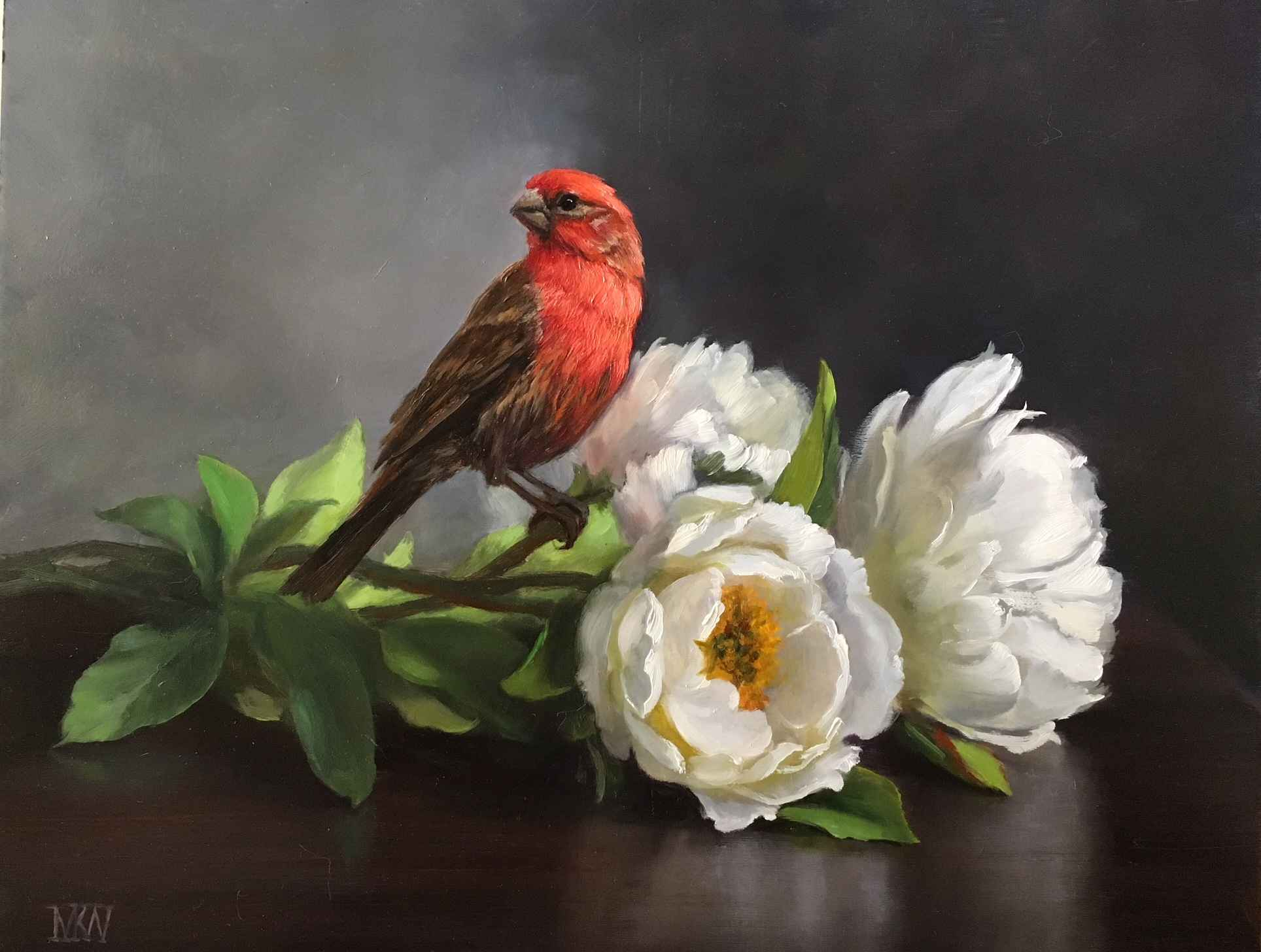 Cardinal and White Po... by  Mary Kay  West  - Masterpiece Online