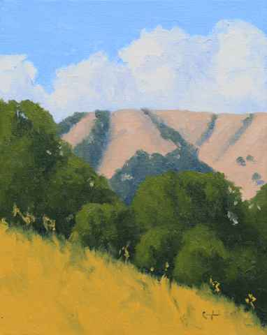 Carmel Valley ( Study...  by  Donald  Craghead