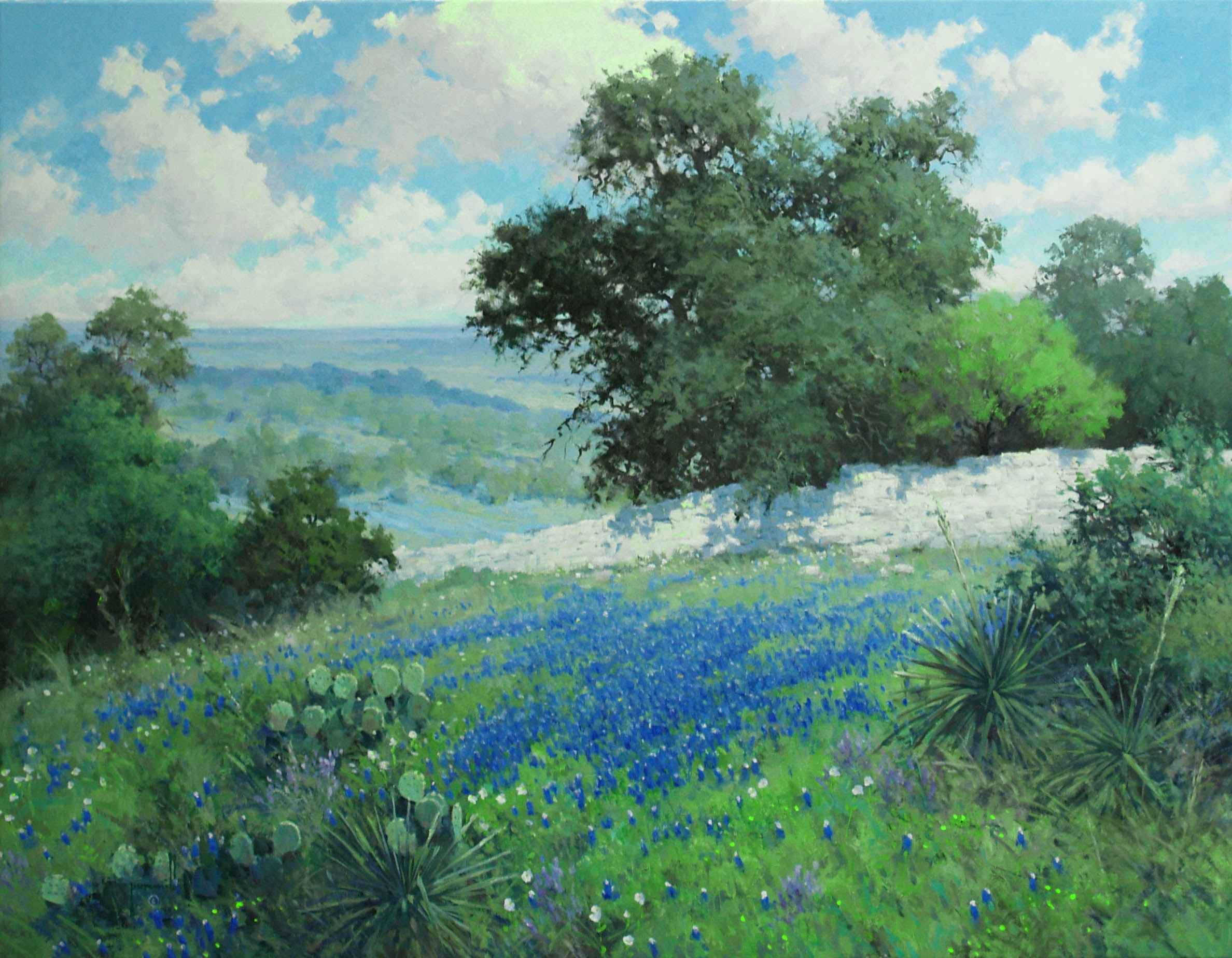 Hill Country Splendor by Mr. & Mrs. Robert Pummill - Masterpiece Online