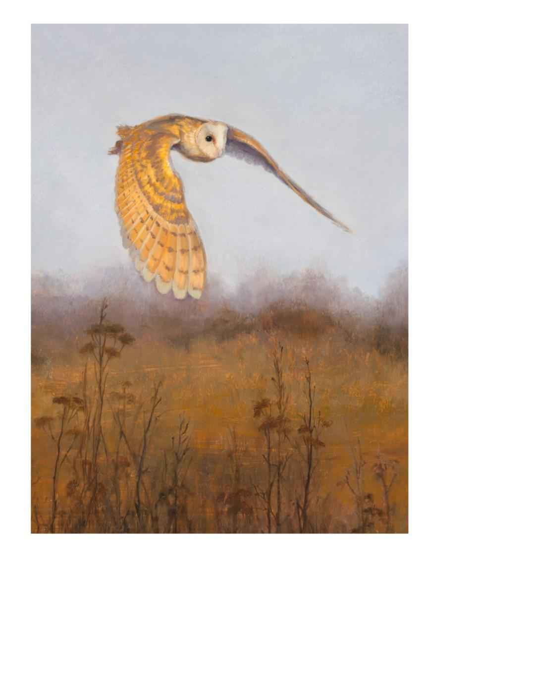 Barn Owl at Dusk by  Mary Kay  West  - Masterpiece Online