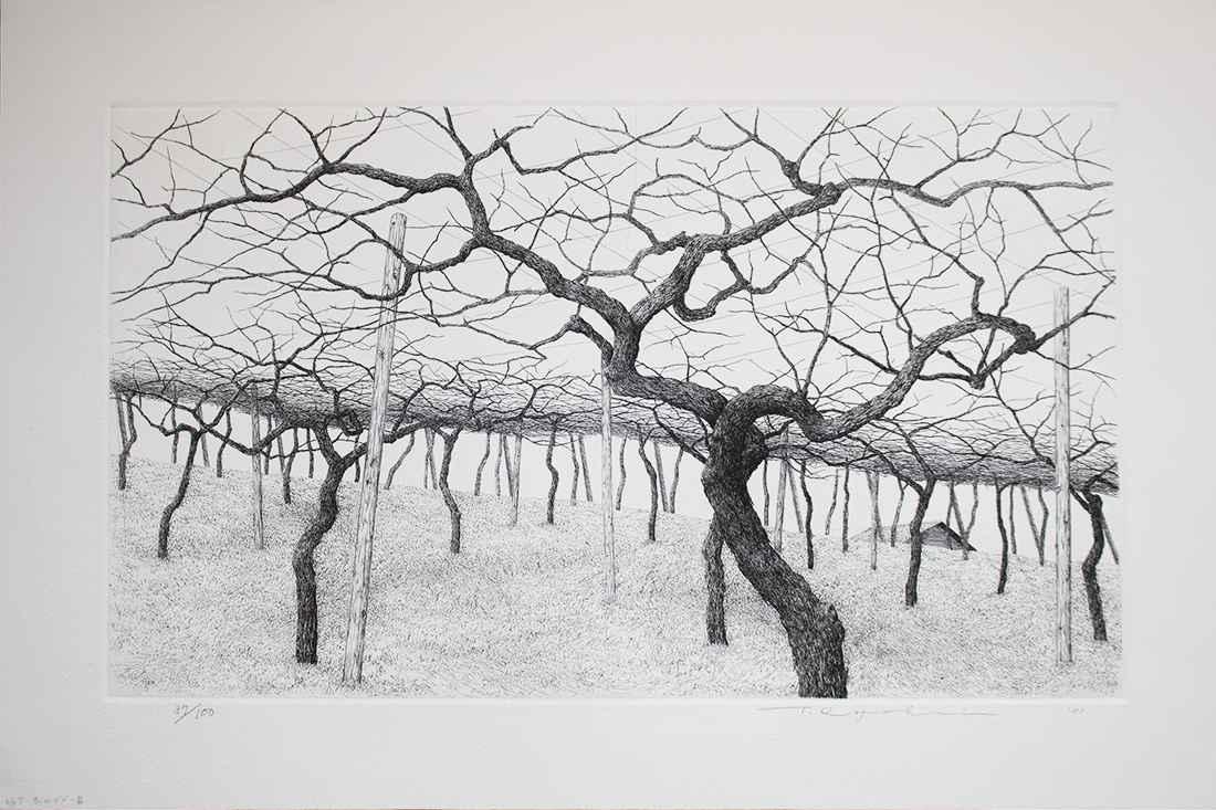 Vineyard in Winter by  Ryohei Tanaka - Masterpiece Online
