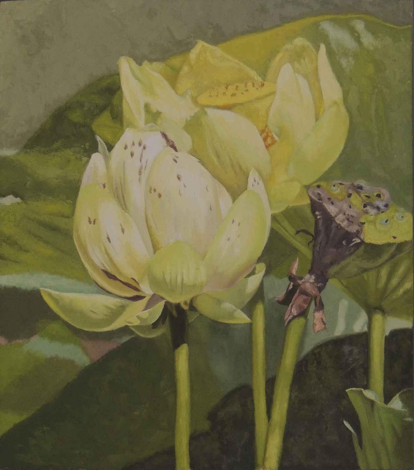 Lotus by  Rusty Frentner - Masterpiece Online