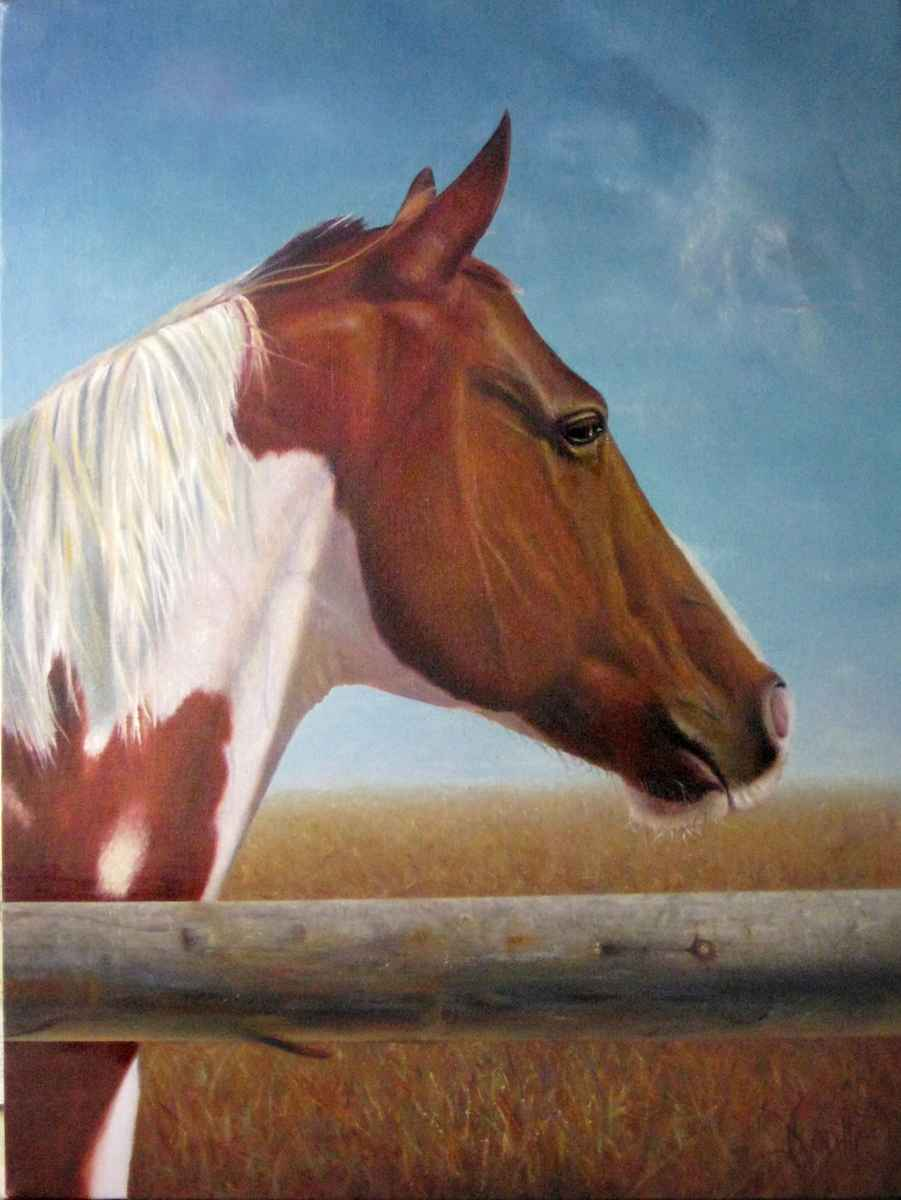 Paint by  Jerry Venditti - Masterpiece Online