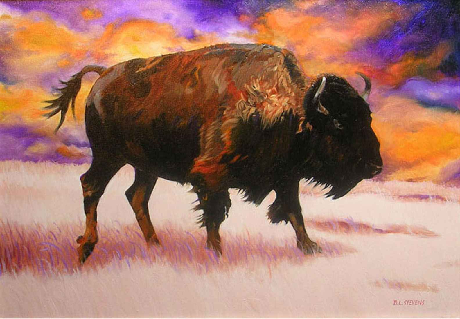 American Bison  by  Dennis Stevens