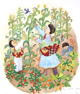 Picking Corn  by  Elisa Kleven