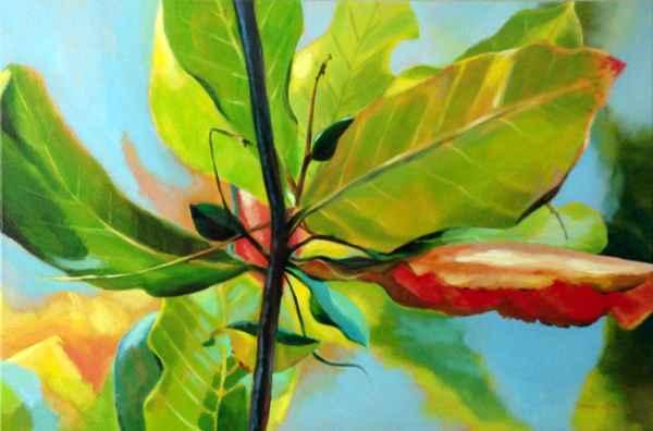 Tropical Almond by  Donna Grandin - Masterpiece Online