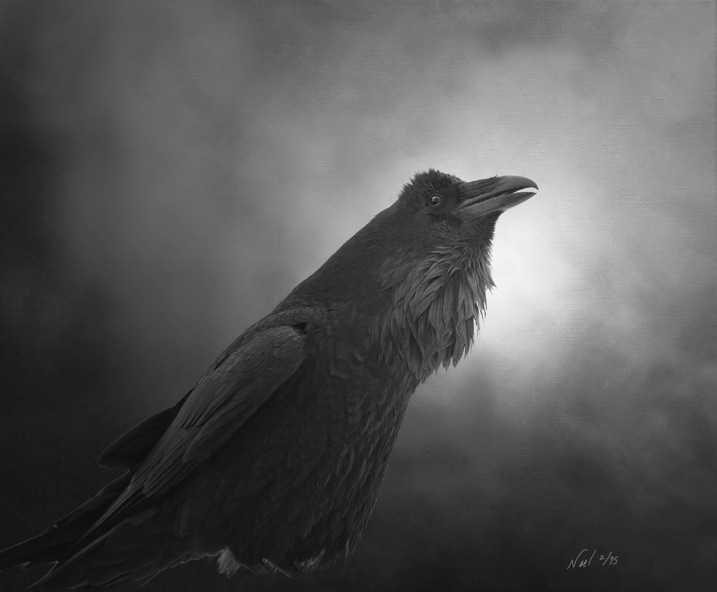 Raven Raven Talking by  Noel Nic'Fergusson - Masterpiece Online